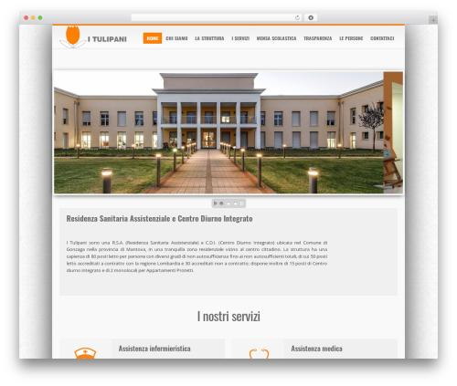 iceMag Theme premium WordPress theme - tulipanirsa.it
