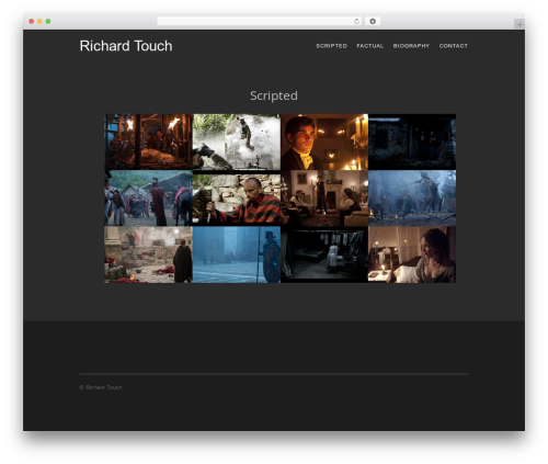 Rare Earth Digital WordPress theme design - richardtouch.design