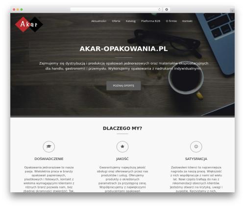 Bizlight Pro WP theme - akar-opakowania.pl