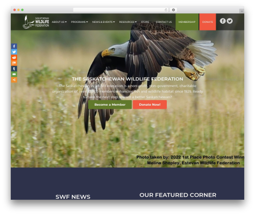Business Pro WordPress template for business - swf.sk.ca