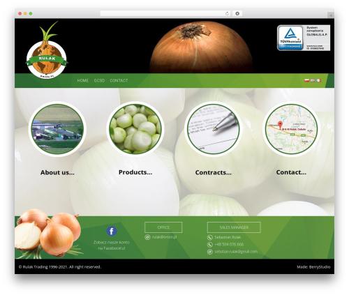 Theme WordPress Onion - onion.pl
