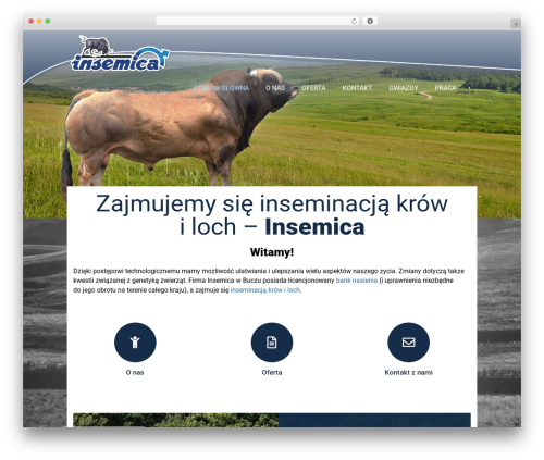 CS GROUP 2016 WordPress theme - insemica.pl
