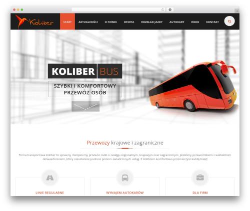 EXCEPTION WordPress theme - koliber-bus.pl