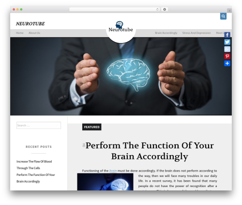 jkl WordPress theme design - neurotube.org