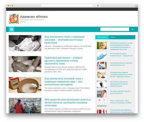 WP-MFC Theme top WordPress theme - adamovoyabloko.ru