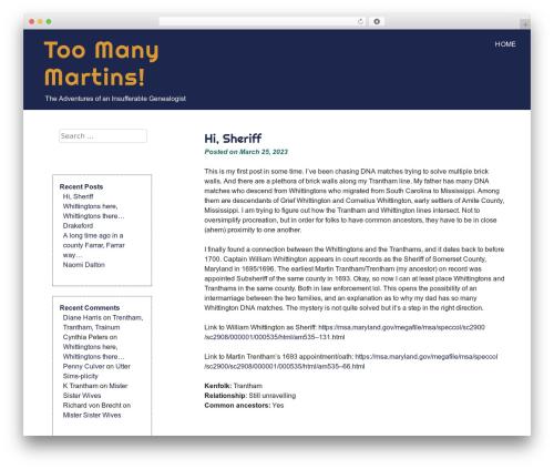 eyesite WordPress template free - toomanymartins.com