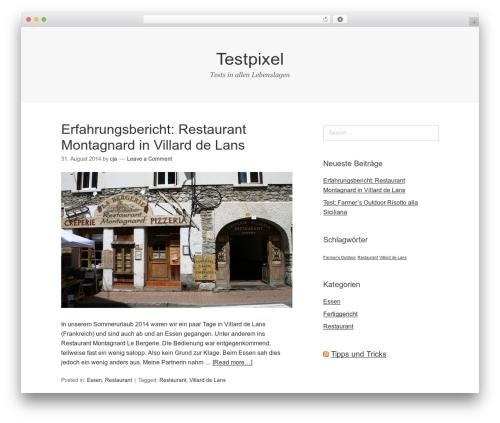 Omega WordPress template free download - testpixel.de