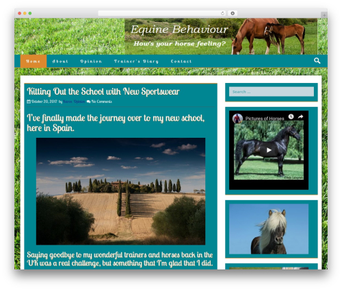 Stiff best free WordPress theme - equinebehaviourforum.org.uk