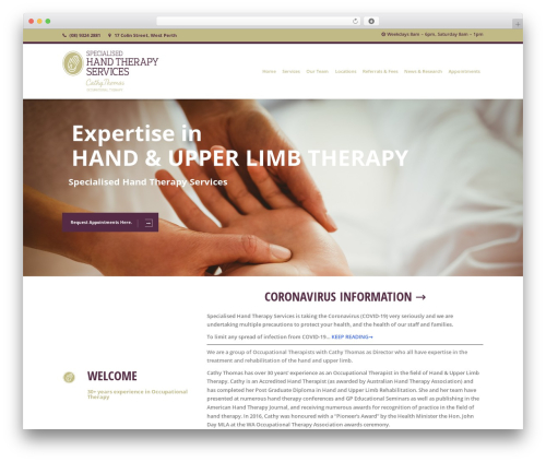 Healthandcare theme WordPress - specialisedhandtherapy.com.au