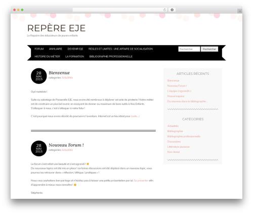 WordPress final-tiles-gallery plugin - repere-eje.fr