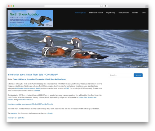 Worldwide WordPress template free download by Zylo Themes