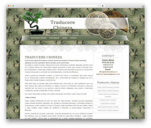 Dyne top WordPress theme - traducerechineza.ro