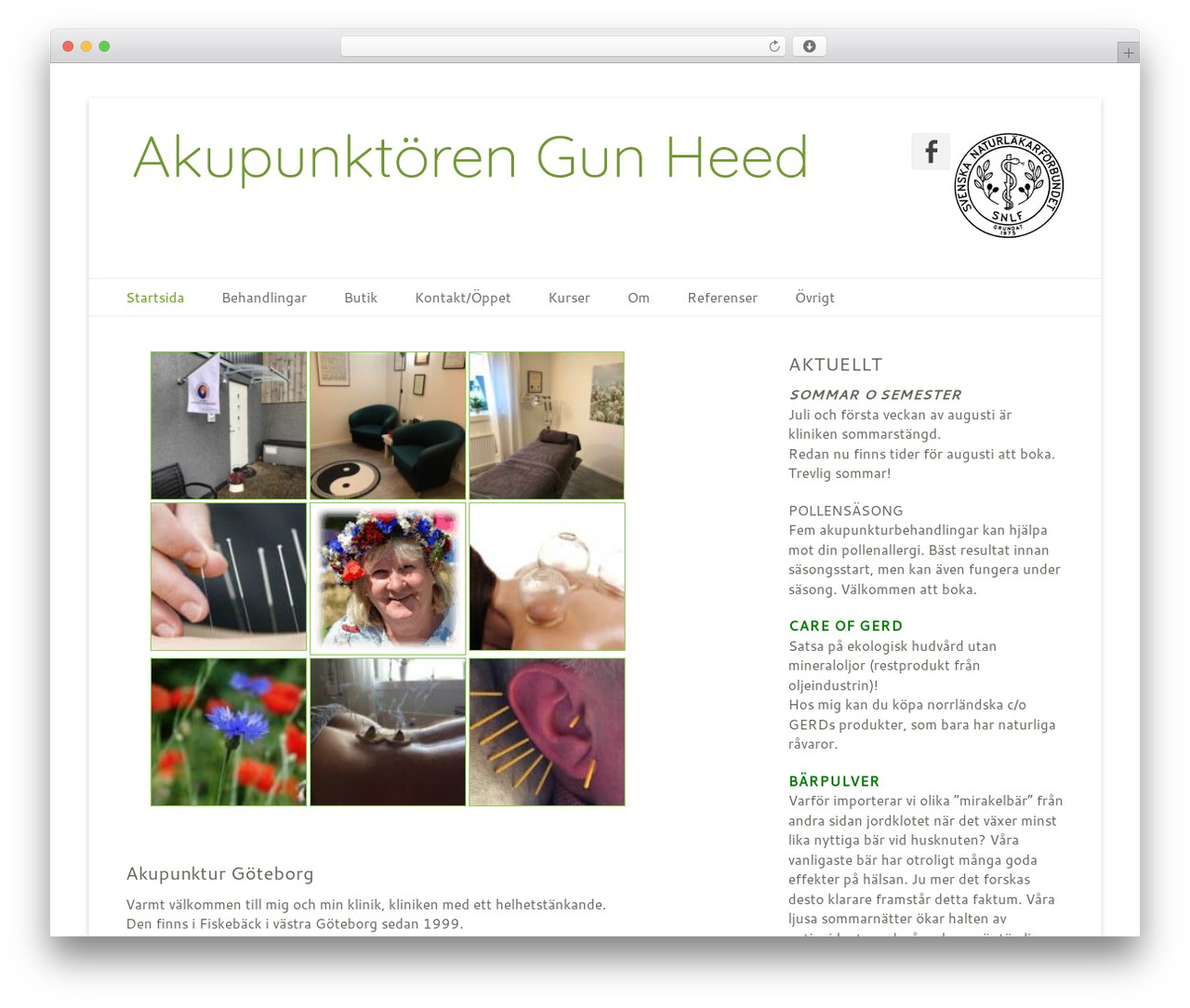 Catch Base Pro theme WordPress - akupunktoren.se
