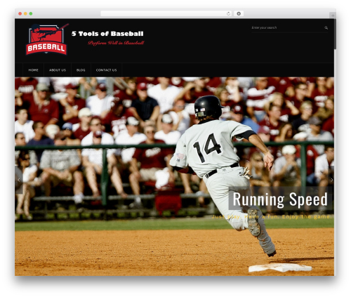 GoalKlub best WordPress theme - performancebaseball.net