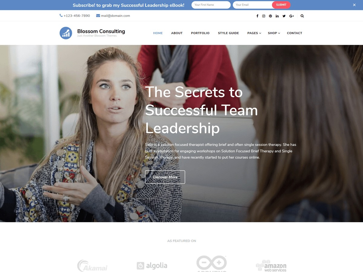 Blossom Consulting WordPress travel theme