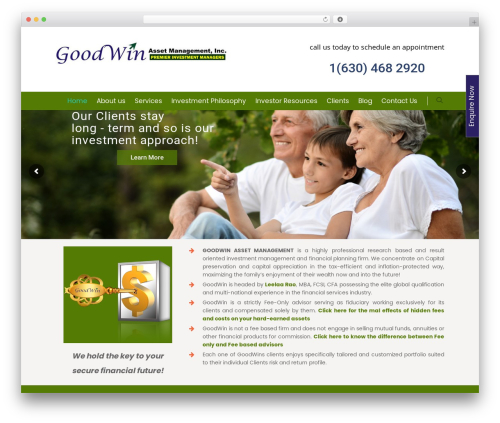 Salient company WordPress theme - goodwinasset.com
