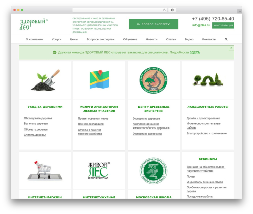 WordPress theme Avada - zles.ru