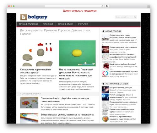 Newsroom WordPress theme - bolgury.ru