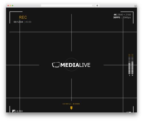 Silverscreen top WordPress theme - medialive.at