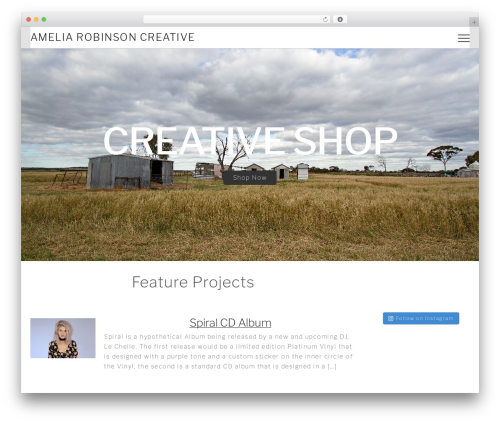 Themify Shoppe WordPress shopping theme - ameliarobinson.design
