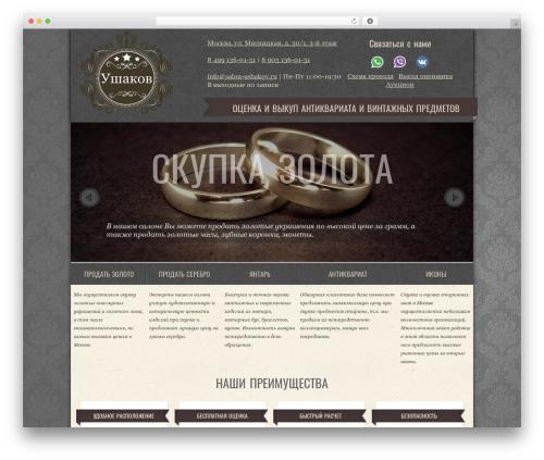WordPress theme Special - salon-ushakov.ru