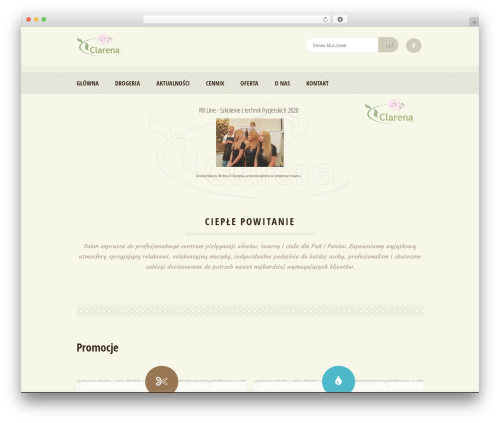 Best WordPress template Dream Spa - salonclarena.pl