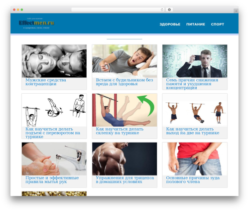 Acajou template WordPress free - effectmen.ru