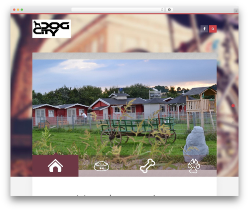 Unity WordPress theme design - dog-city.at