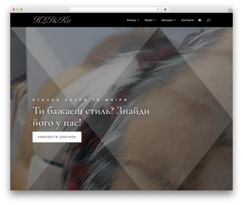 Divi WordPress theme - kliko.com.ua