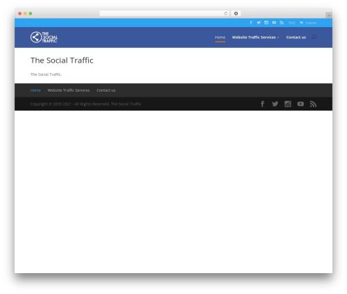 Best WordPress template TST - thesocialtraffic.com