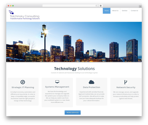 BusiProf Pro WordPress theme - tolchinskyconsulting.com