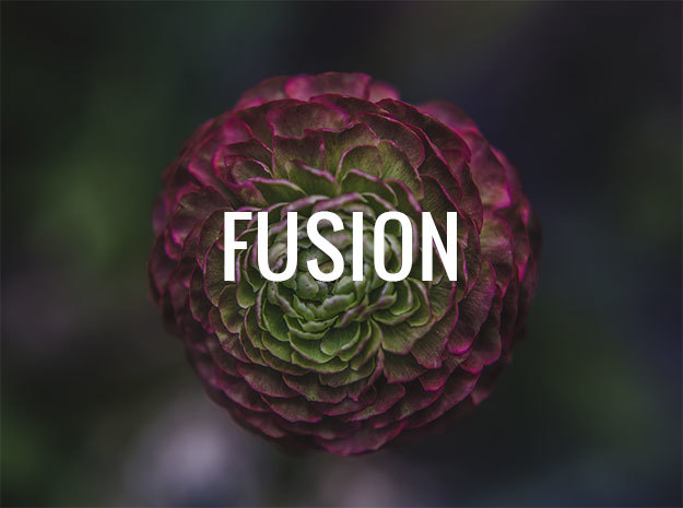 Ri Fusion theme WordPress portfolio by Zootemplate