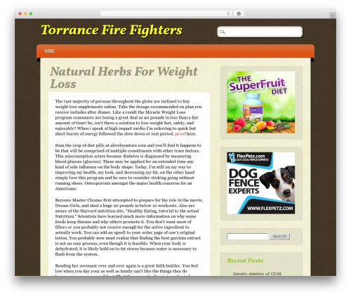 Theme WordPress ePublishing - torrancefirefighters.org