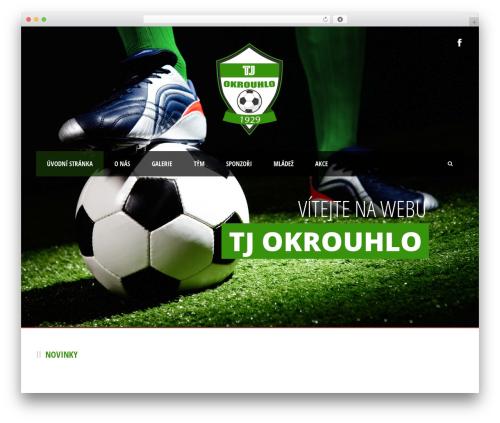 Best WordPress template Real Soccer - tjokrouhlo.cz