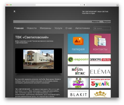 Subway premium WordPress theme - svetilovskiy.by