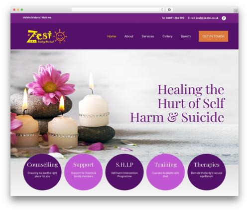 WebsiteNI Theme WordPress theme design - zestni.org