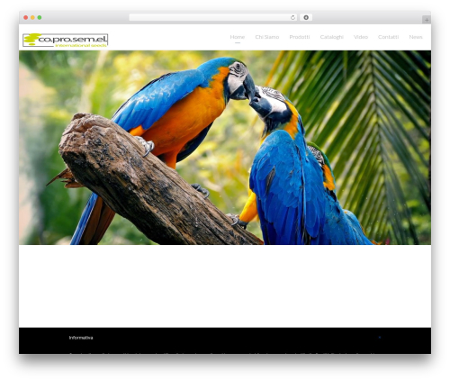 Light Dose best WordPress theme - coprosemel.it