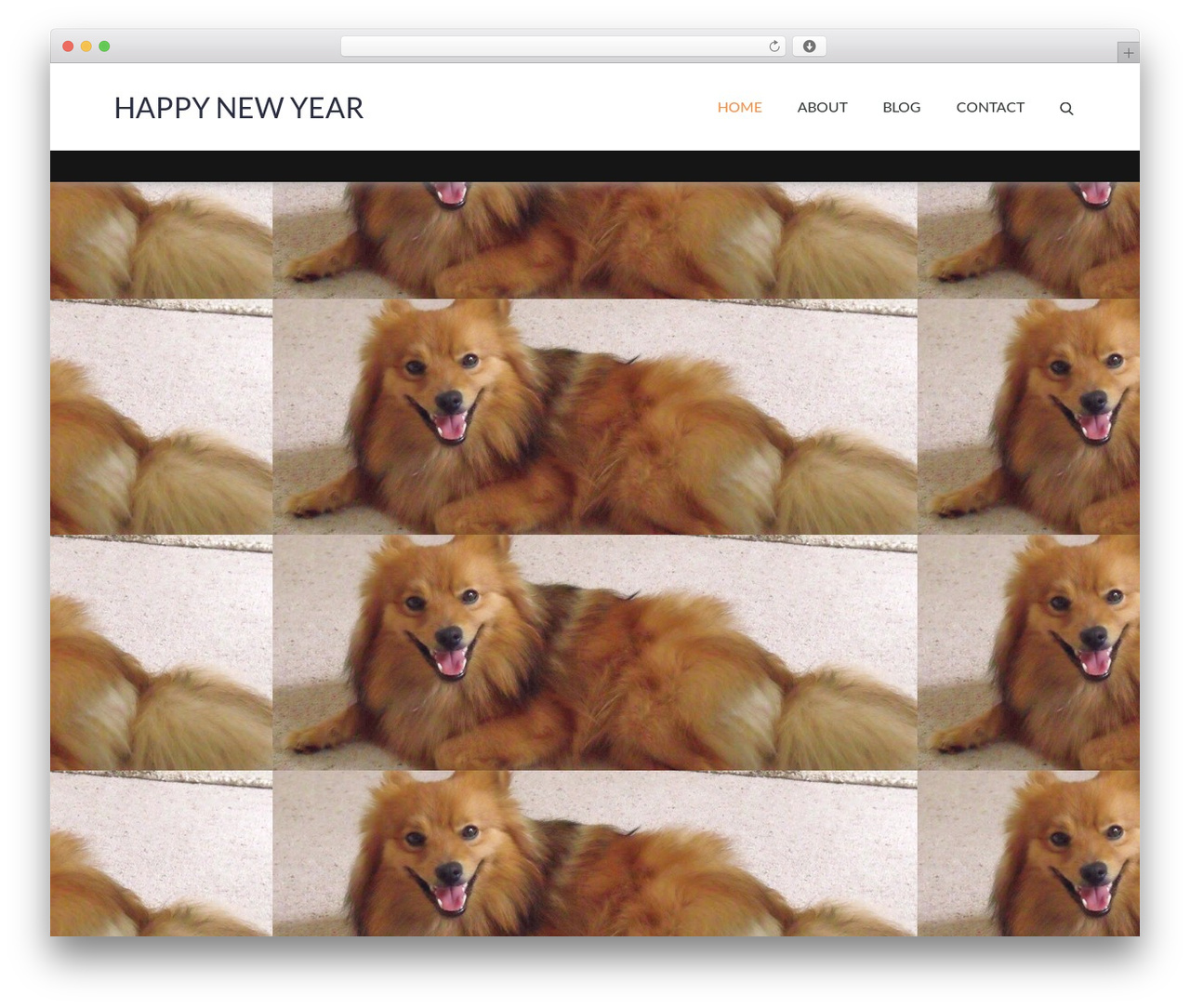 Pet Business company WordPress theme - icanttellyouenough22.com