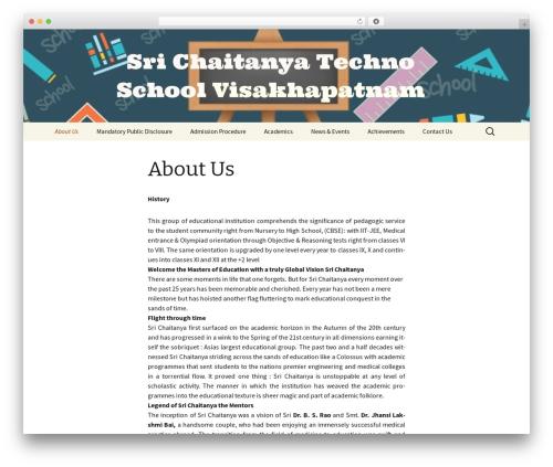 WordPress website template Twenty Thirteen - srichaitanyatechnoschool40044.net