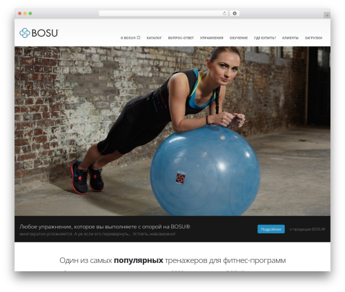 Porto Themekiller.com best WordPress theme - bosu-russia.ru