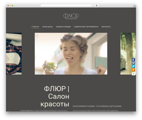 Chester WordPress theme - salonflur.ru