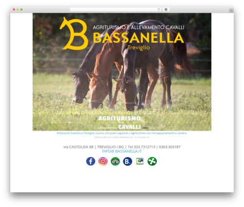 WordPress theme Divi - bassanella.it