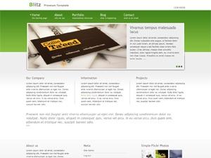 Blitz Green WordPress theme design