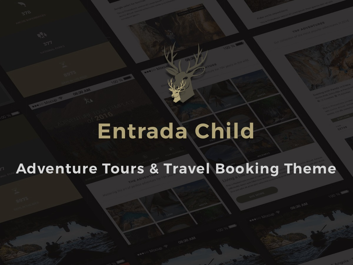 Entrada Child best WordPress template