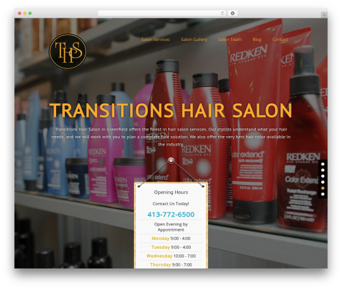haircare WordPress template - transitionshairstyling.com