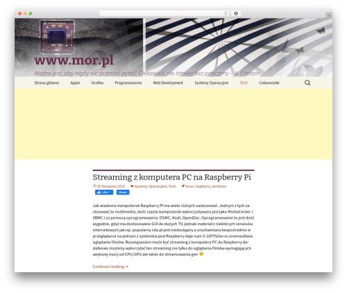 Free WordPress WP-Terminal plugin - tech.mor.pl