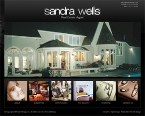 WordPress template Traci Schachle