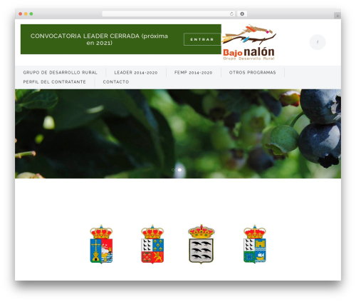 Bridge WordPress theme - bajonalon.net