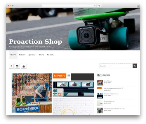 Etrigan WordPress shopping theme - proactionshop.ru