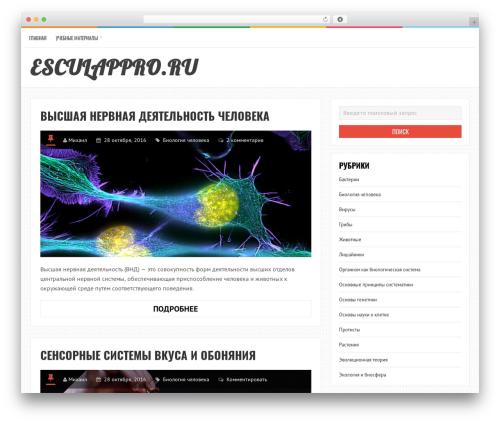 LiveBlog WordPress theme download - esculappro.ru